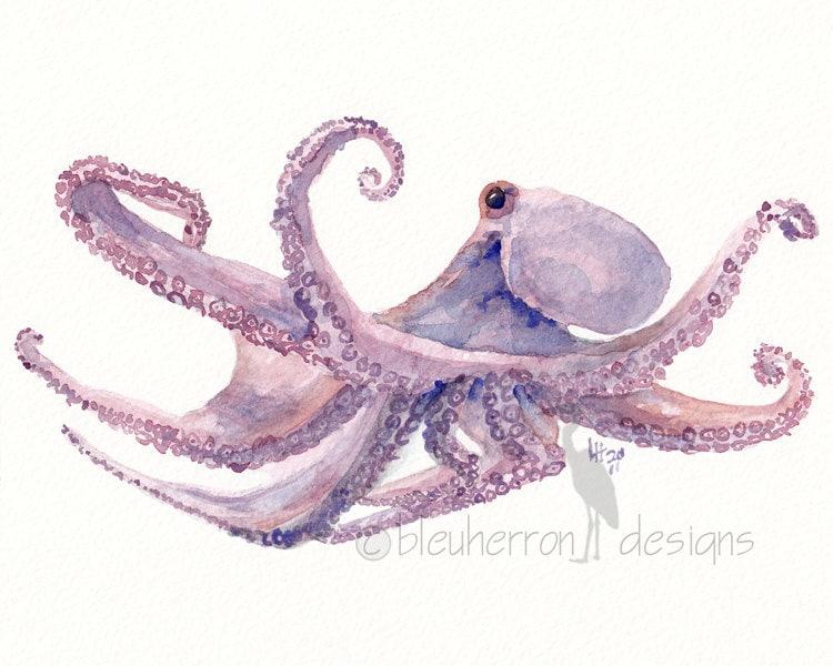 ocean watercolor- Octopus- 8x10 print - bleuherron