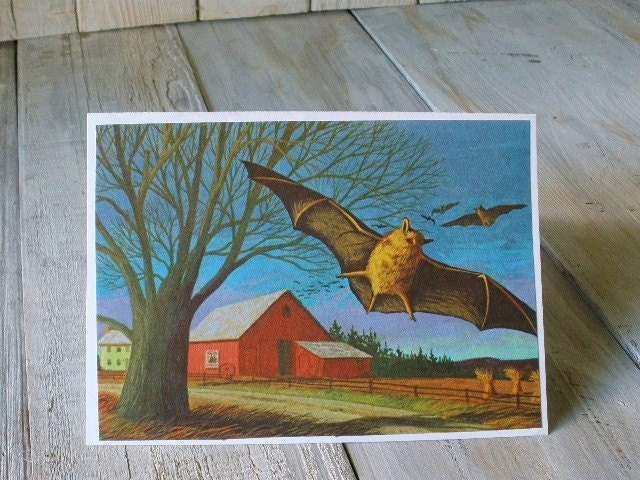 Cards vintage book pages flying bat