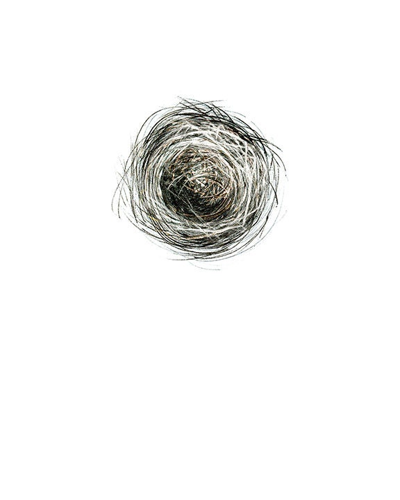 "Nest drawing, with egg - 8"" x 10"" fine art drawing print by DiToma plus a tiny rock shapped like an egg - ArtByDianaToma"