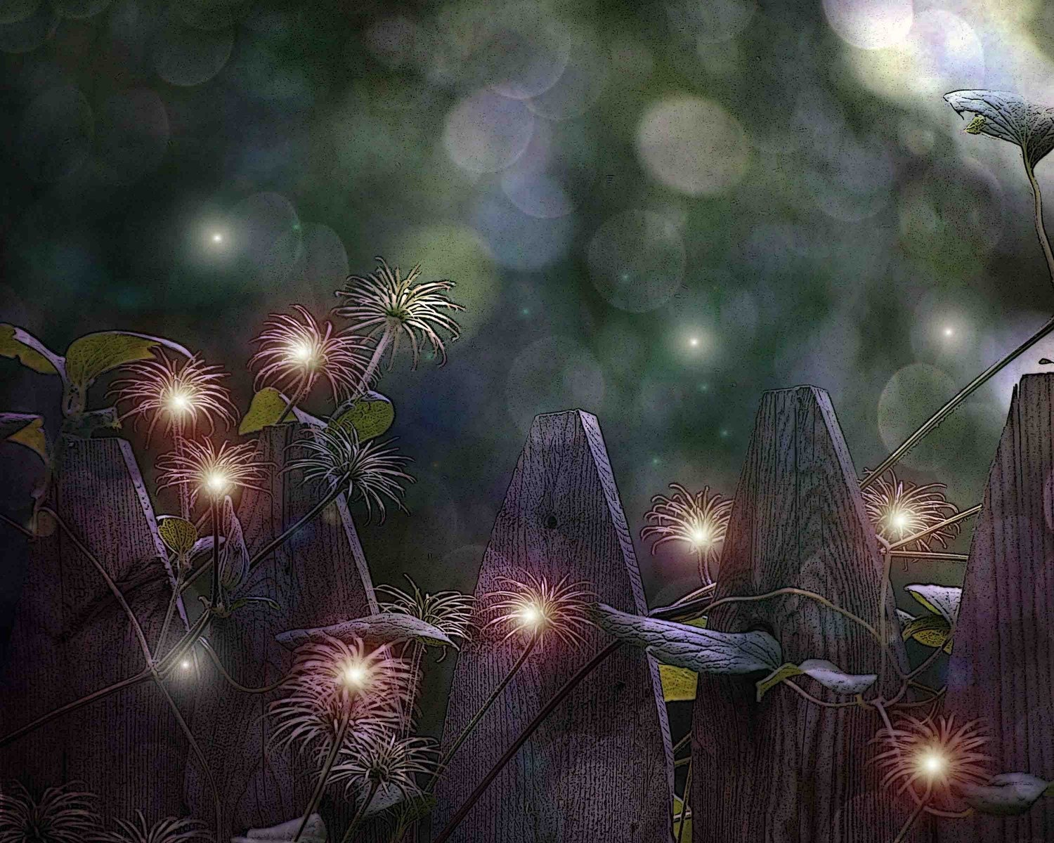 Nature Photogaphy, fantasy, fairies, seed pods, purple, bokeh, One Enchanted Evening fine art photgraphy print 8x10