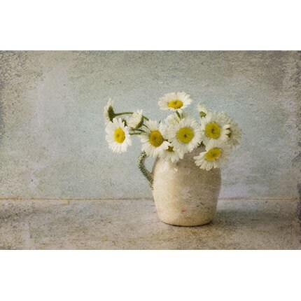 White Daisy Photograph, Still Life of a Jug of Daisies,  Floral Art Print,  Flower  Wall Decor - JudyStalus