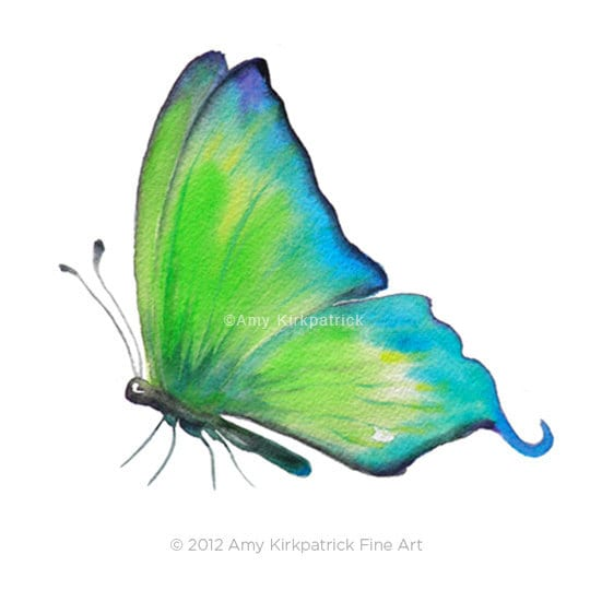 No.4 Skip Green Butterfly, 8x10 Signed Fine Art Print of Amy Kirkpatrick watercolor - AmyKFineArt