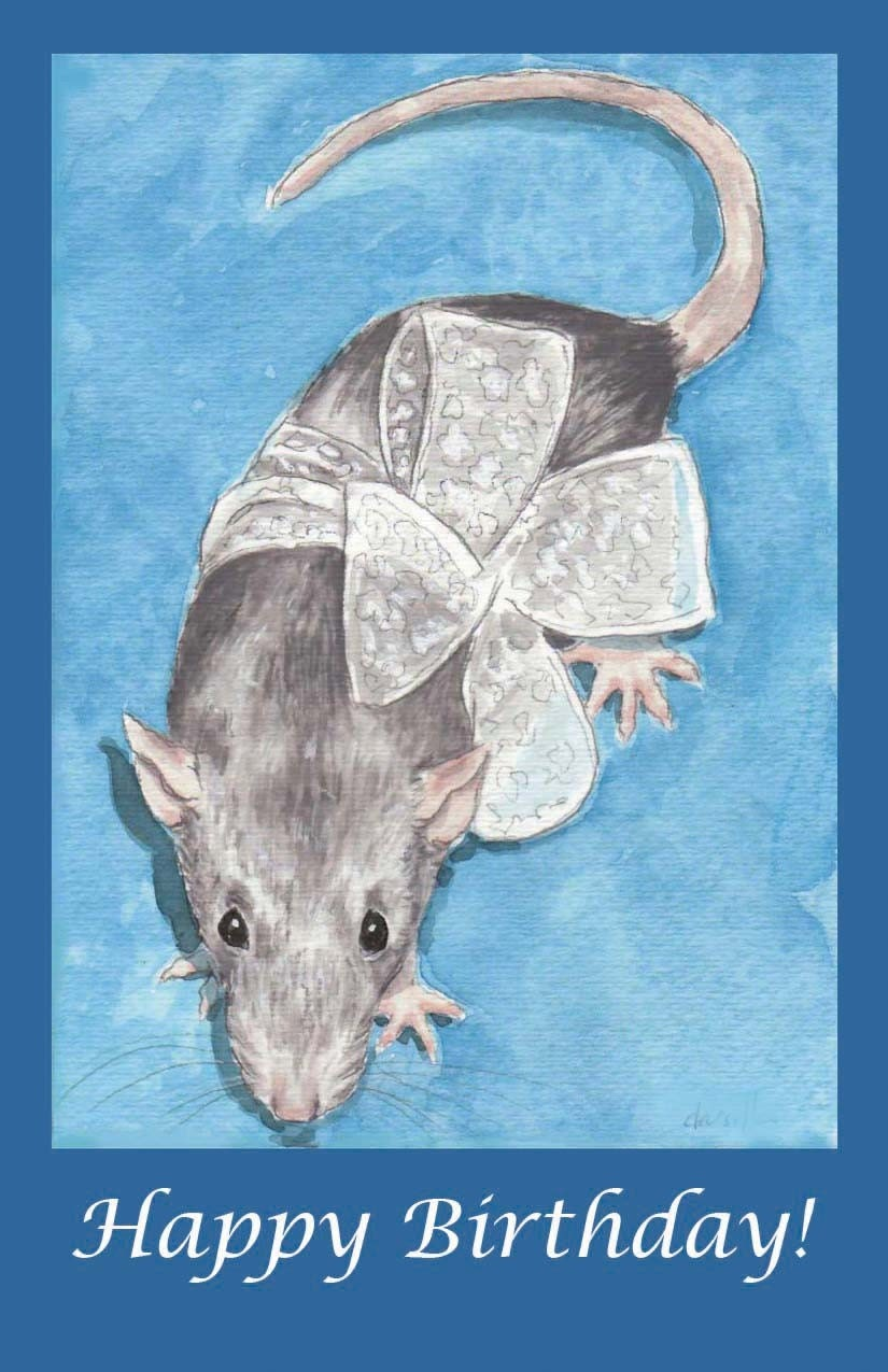 Silver Rat Birthday - Drusilla