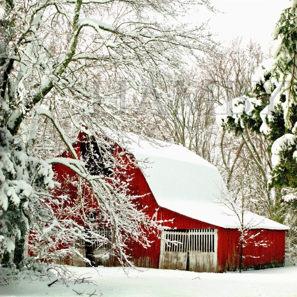 Showoff--Snowy Red Barn--10x10--Fine Art Photography