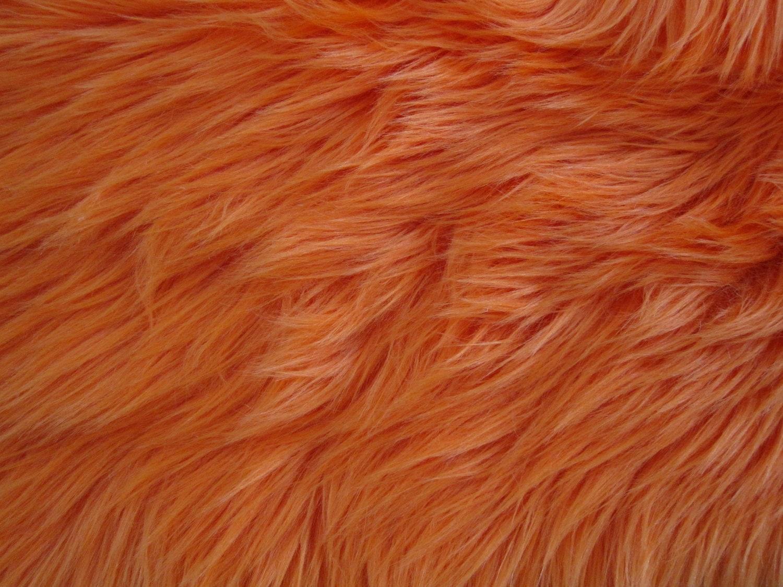 Dog Fur Texture Textures Pinterest Fur Texture And Dogs