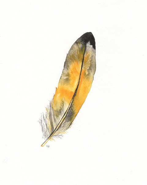 Yellow Macaw feather / Black, Yellow, Grey  Watercolor Print