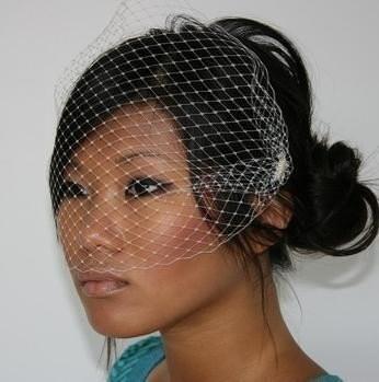 Agnes Birdcage Veil