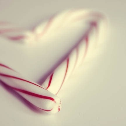 Christmas Photograph - candy canes heart shape red white stripes Christmas 5x5 home decor - FirstLightPhoto