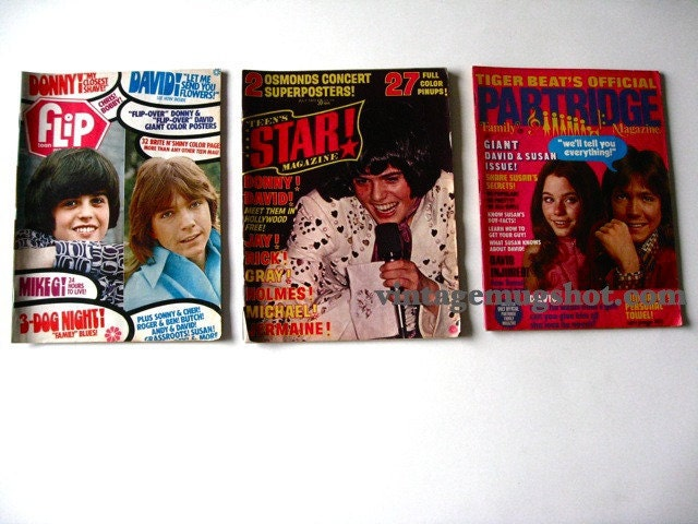 Take a trip back in time to the seventies with these three teen magazines.