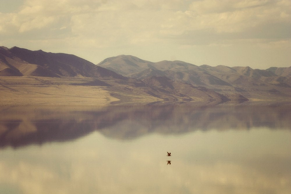 Reflection sepia toned water and mountain scape with a bird flying over Fine Art Metallic photo Print 8x12 - SylviaCPhotography