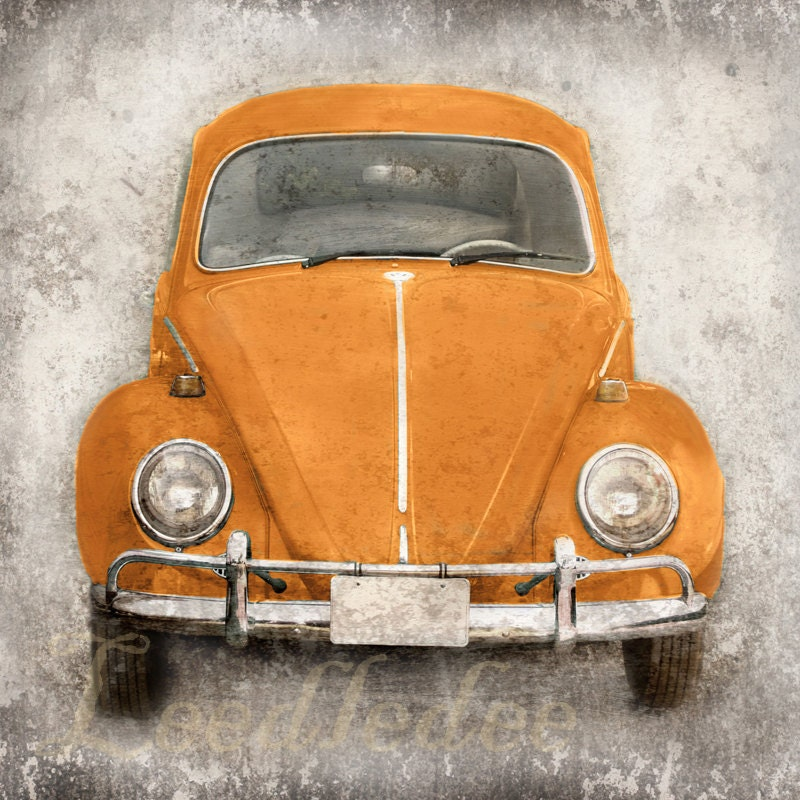 Orange Bug (or CHOOSE your color) - Vintage Style Original Photograph 8x8 or 8x10 - leedledee