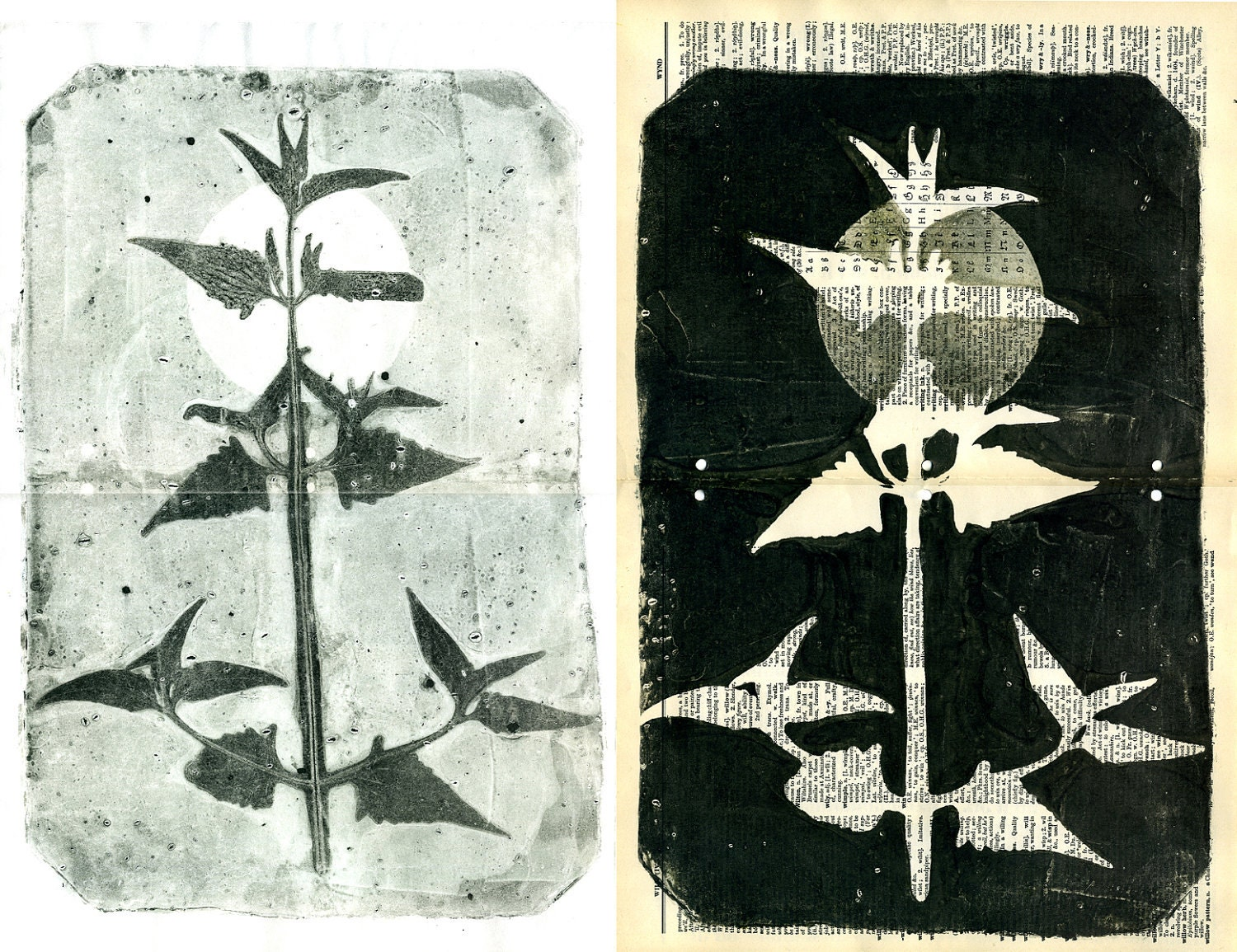 ooak Monotypes: pair of Botanical Silhouettes on Vintage Dictionary Sheets and Rice paper - 88editions
