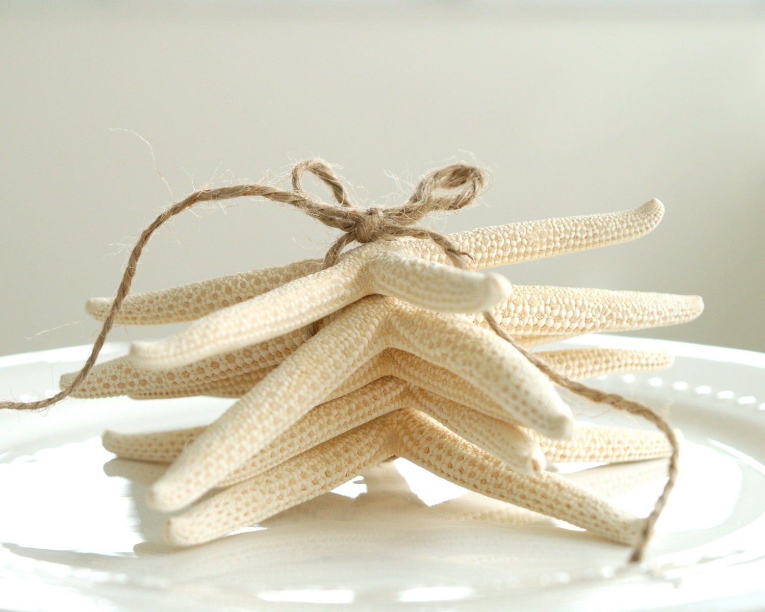 Starfish Wedding Decorations, White Pencil Starfish for your Beach Wedding Table Decor, Table Setting, Sea Themed - 5 - FairyfolkWeddings
