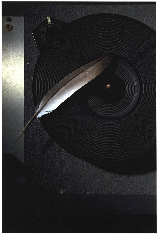 Silent Music - karensmithphotos