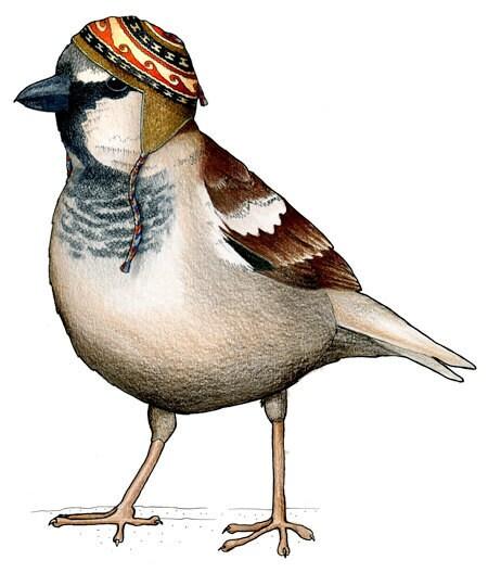 Tree Sparrow in an Alpaca Hat: A6 Greetings card