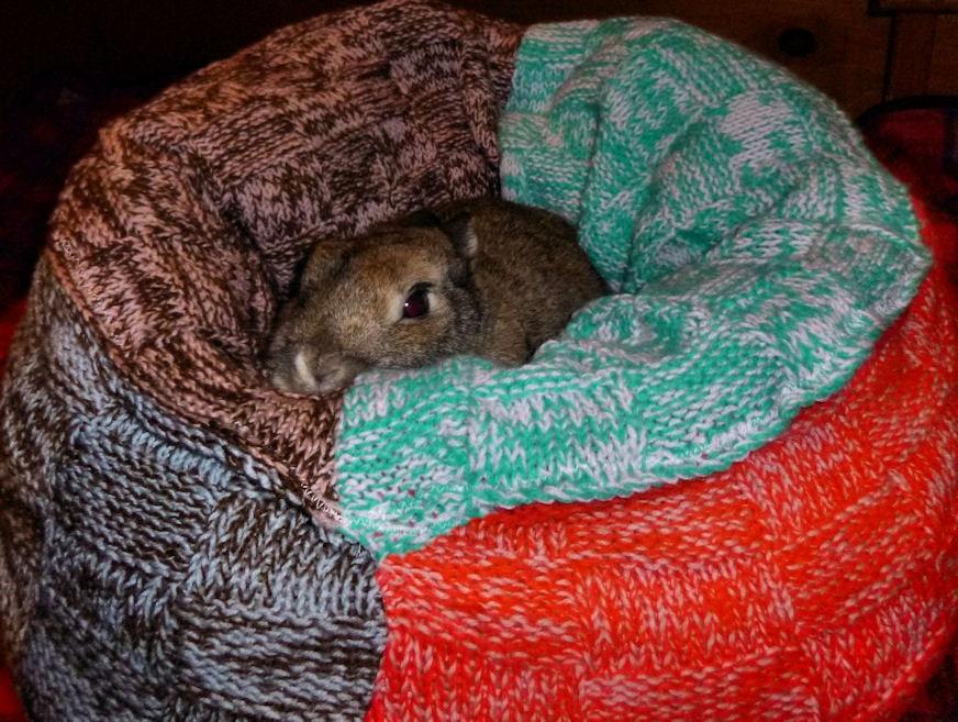 Buñuelo bunny snuggler bed