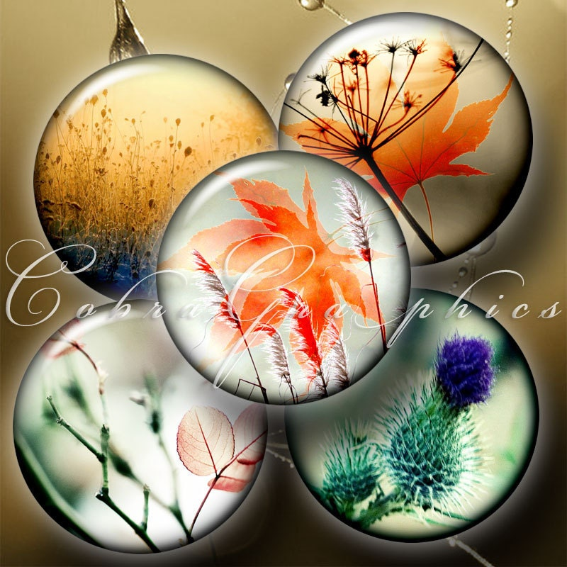 Tender CloseUp 2 Digital Collage Sheets CG438 15 by CobraGraphics