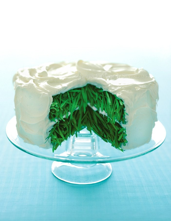 Grass Cake with Vanilla Frosting Fine Art Photograph Photo - Bunderful