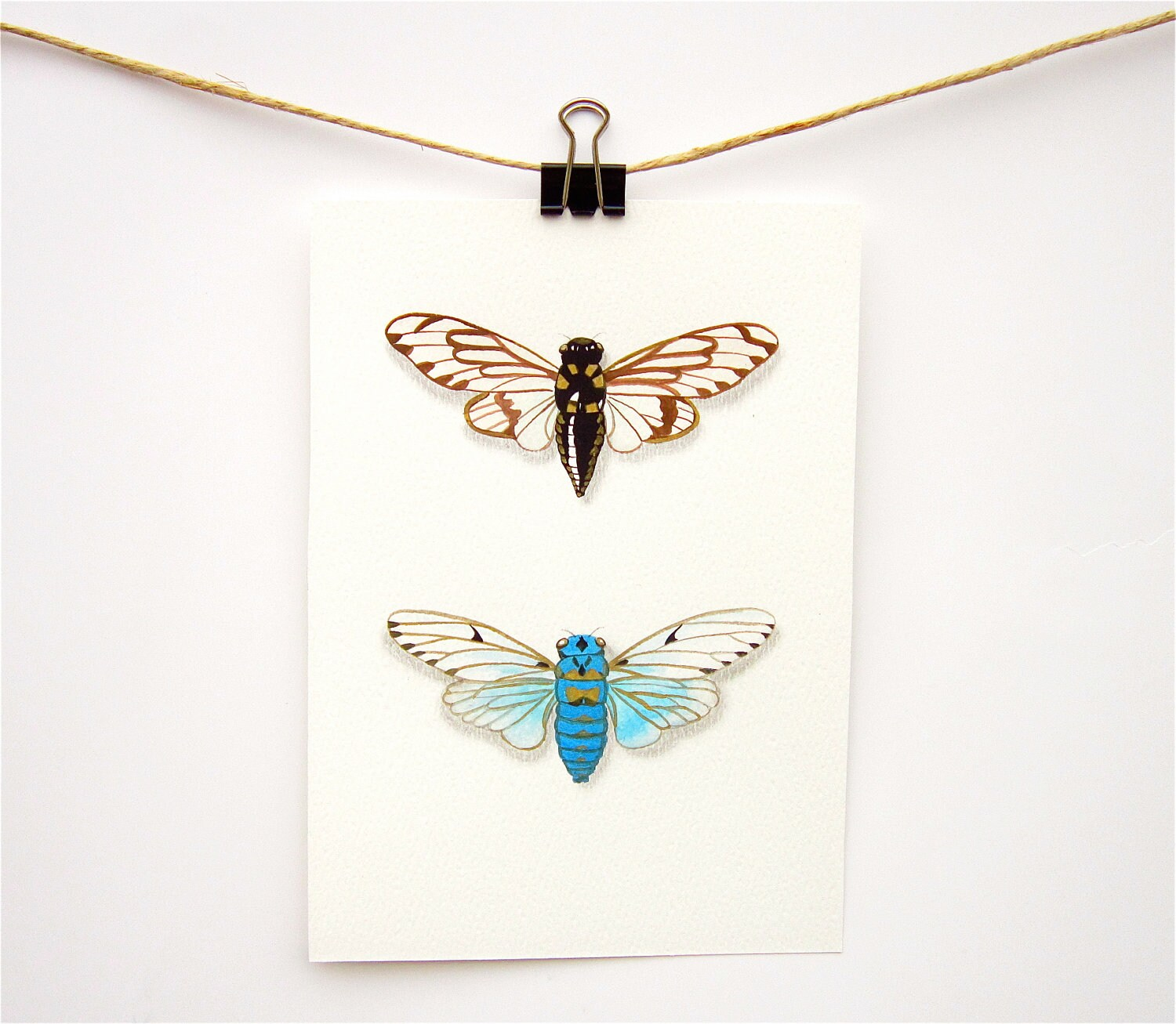 Blue Cicadas insect art print - Print of my painting of two blue cicadas - WingedWorld