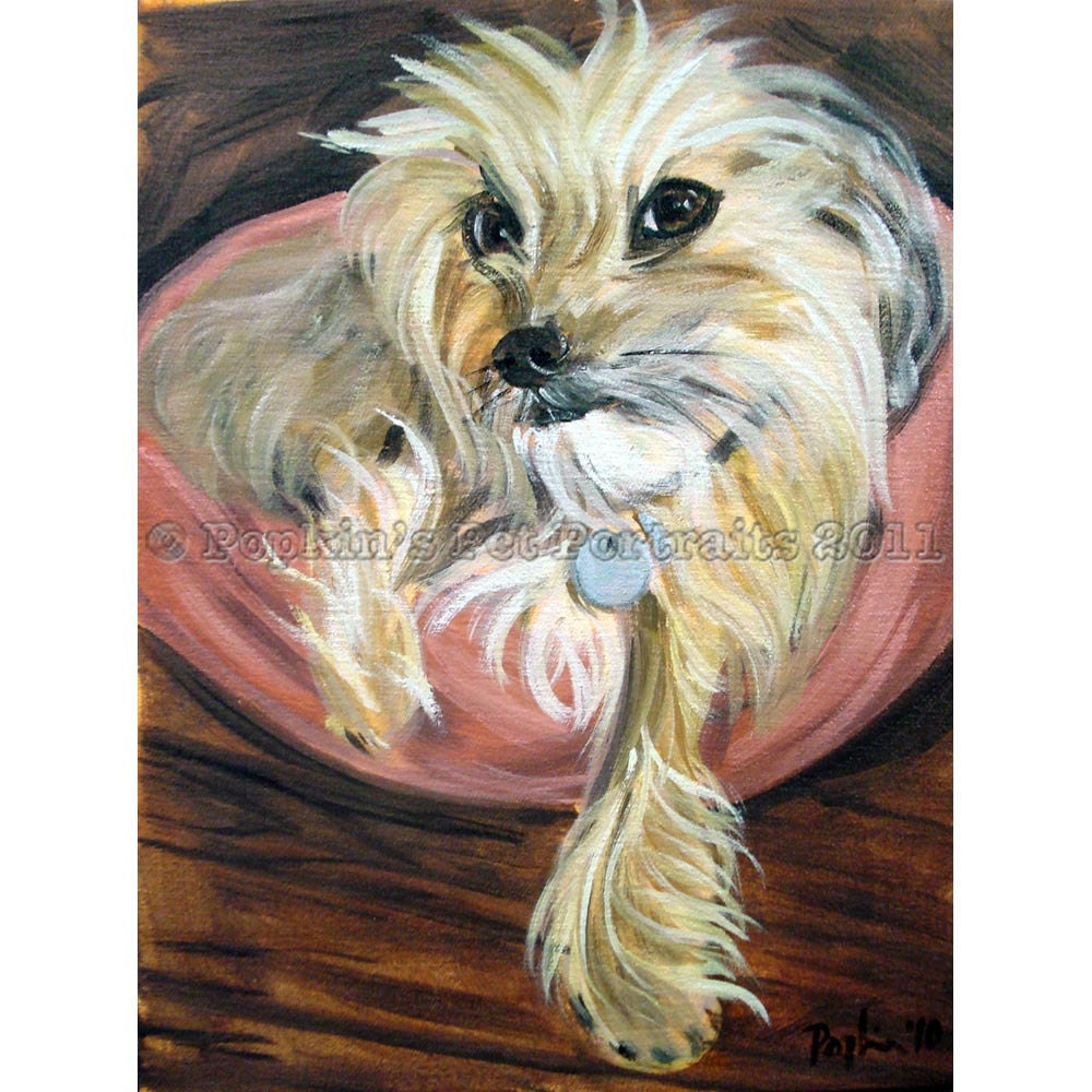 dog or cat pet portrait oil on canvas 12x16
