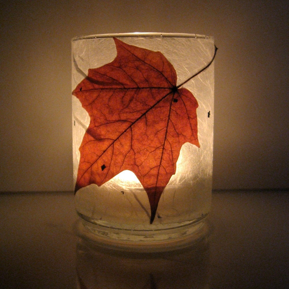Real Autumn Maple Leaf Earth Light - paperplanet