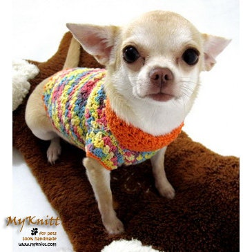 Free Crochet Pattern Chihuahua Sweater : Crochet Pattern Sweater+Chihuahua Design Patterns Catalog