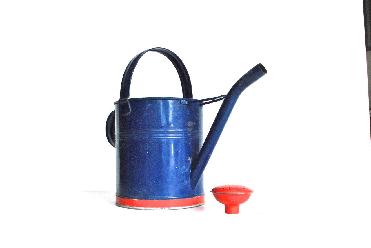 vintage red and blue watering can