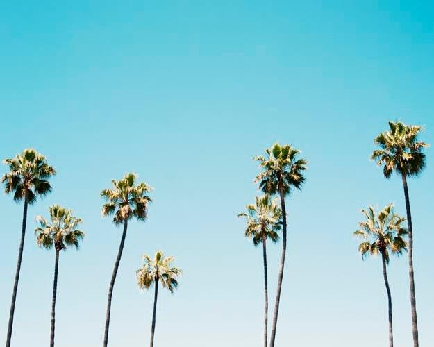 California Wall Art, Palm Trees, Landscape, Blue, Aqua, Summer, Photography Decor, Californication, 8x10 Print - BreeMadden