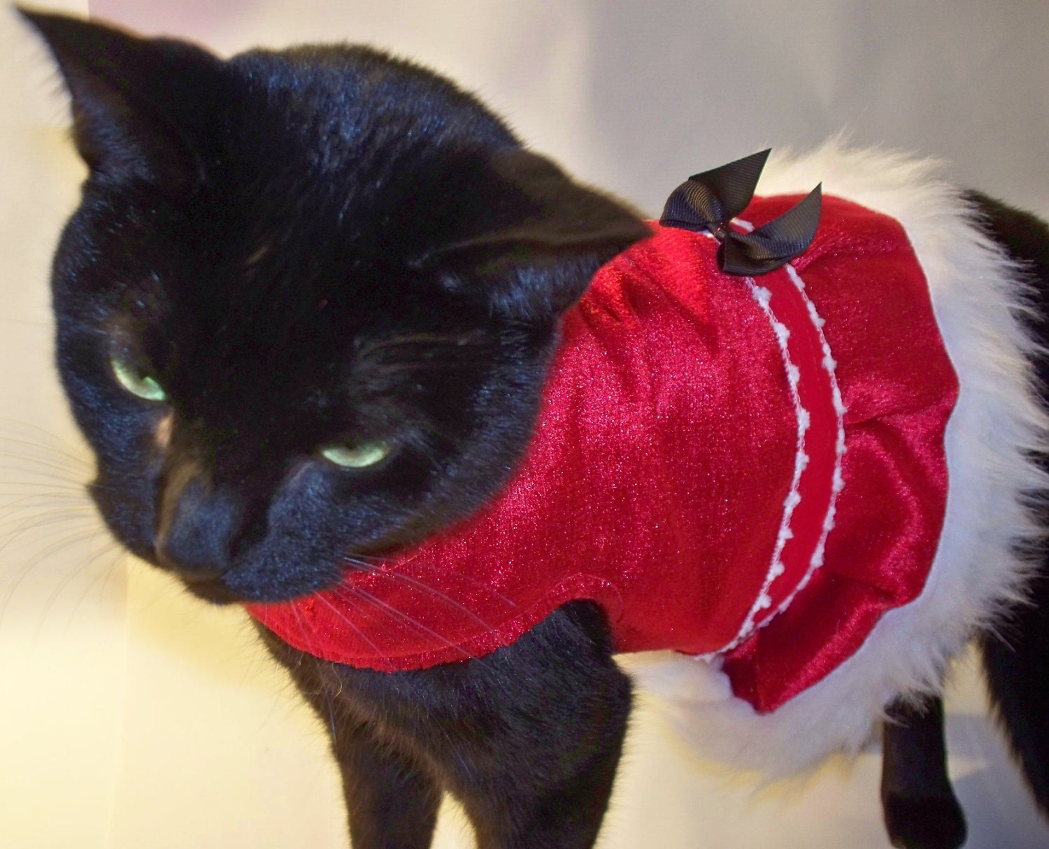 red velvet and fur christmas cat costume & Christmas Cat Costumes Now Featured in Gift Guide! - Mousebreath ...