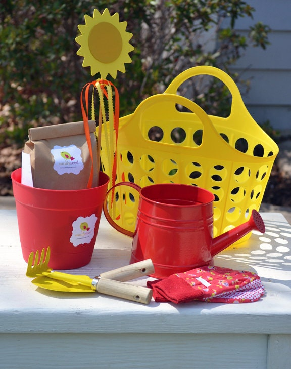 Deluxe Sunnyseed Garden Kit - RaspberryPrairie