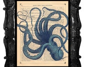 Squiggly Blue Octopus Vintage Art Print