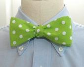Apple green polka dot bow tie