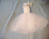 Girl's Snow Fairy Tutu Dress and Headband Set - white and iridescent glitter tulle