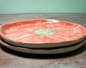 helianthemum dessert plates