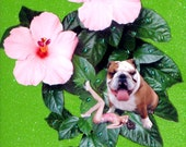 bulldog collage photocollage sexy woman tagt team art green pink flower home decor pet