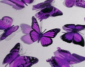 AMETHYST Color BUTTERFLIES 12x Purple Butterfly