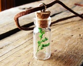 Necklace - Baby Tree in Miniature Jar on Leather Cord - For Him or Her
