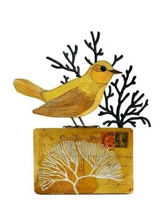 Bird No.15