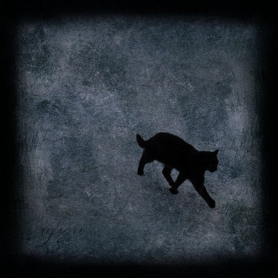 Black cat photograph, cat print, Walking Away, Fine art photography, cat photo, photo painting