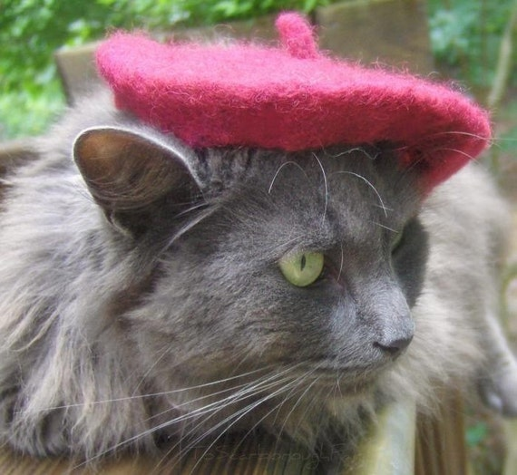 Cat Beret - French Chic Pet Hat