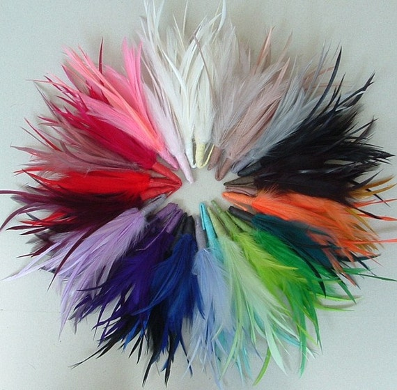 Hackle and Biot Arrangement - Sampler Pack