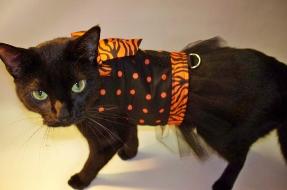 Tulle Halloween dress for cat