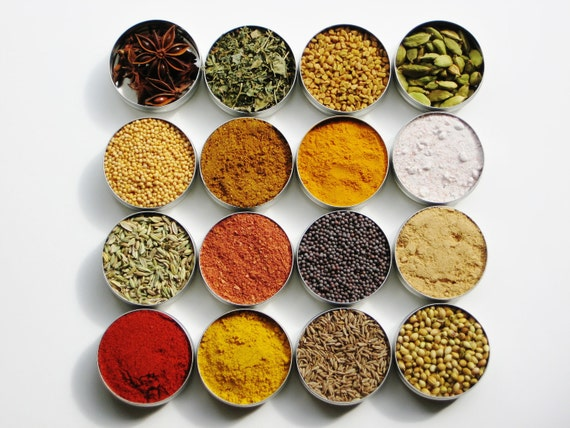 Indian Spice Kit - 16 exotic herbs & spices for cooking / grilling Indian food - 4 recipes included - DIY cooking spice gift