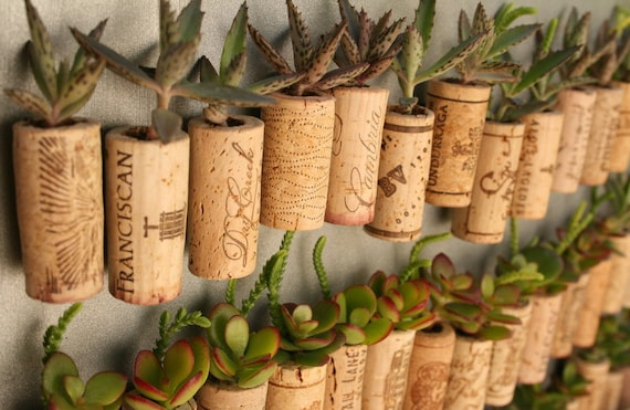 CUSTOM Order for Courtney Succulent Cork Magnets