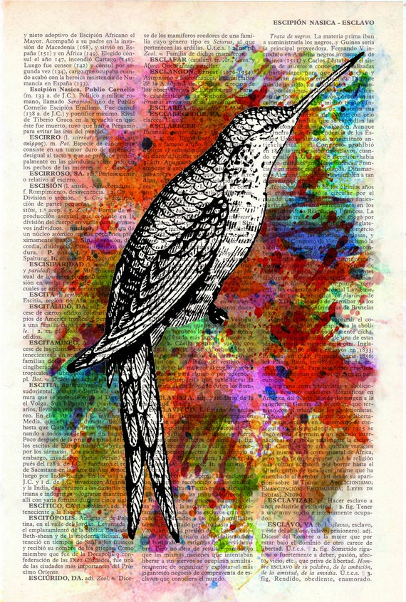 Hummingbird Collage Print on Vintage Dictionary Book altered art dictionary page illustration book print art