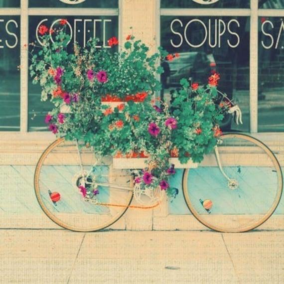 Летние велосипедов фотографии 12x12