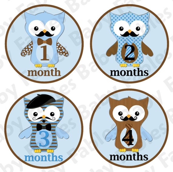Monthly Baby Onesie Stickers - Little Owl Dudes NEW and SUPER CUTE