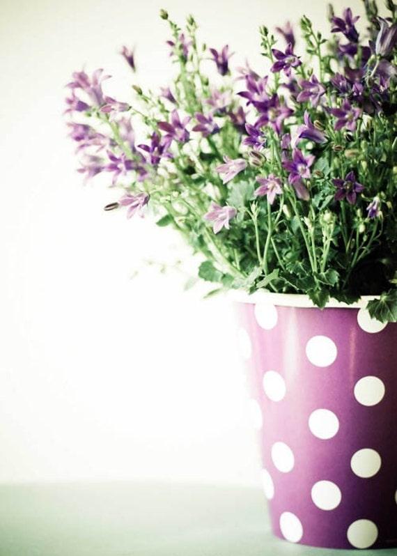 Счастливые Маленькие горошек.  барвинок цветок фотографии.  фиолетовые стены искусства.  причудливый декор дома.  потертый шик дома.  готовы к кадру