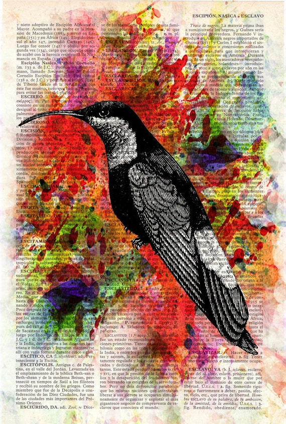 Hummingbird Collage II Print on Vintage Dictionary Book altered art dictionary page illustration book print art