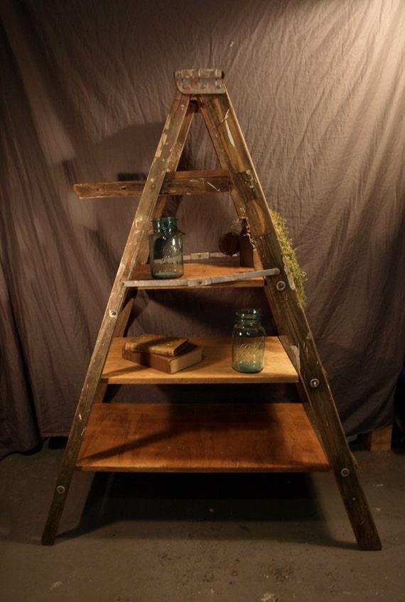 Pintura Librero Ladder